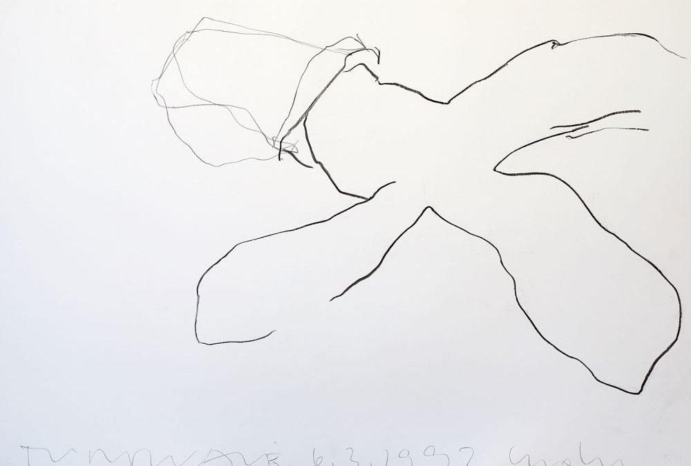 Drawings 1992